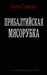 Прибалтийская мясорубка (СИ) - Старицын Виктор Карлович